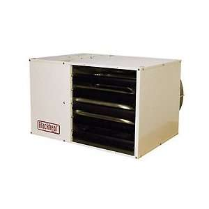 Btu/Hr Unit Heater Ng Separated Combustion Steel