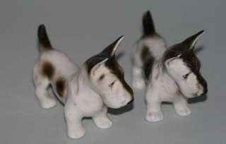 PAIR ROYAL DUX FOX TERRIER DOGS PORCELAIN FIGURINES
