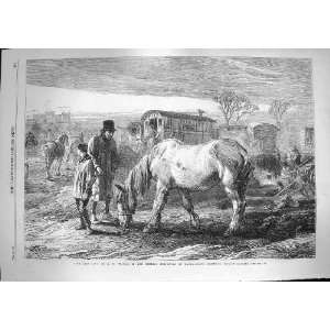 1868 Last Lot Horses Gipsy Waggon Dudley Gallery Art: Home & Kitchen