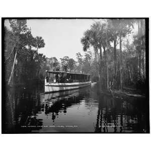 Princess Issena near Tomoka landing,Ormond,Fla.: Home