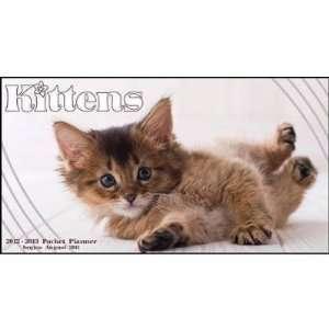 (6x9) Kittens 16 Month 2012 Weekly Planner Calendar