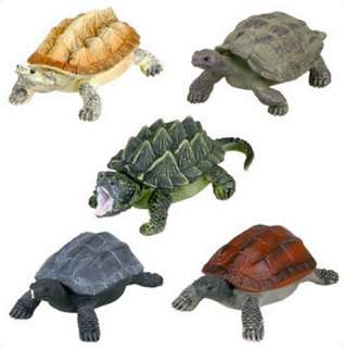 Yujin Animals Moving Turtle Real Gashapon Figure x5