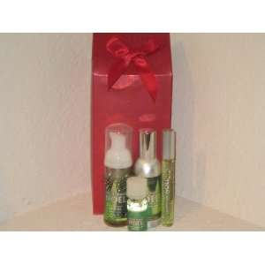 Body Works Holiday Traditions Vanilla Bean Noel Small Christmas Gift