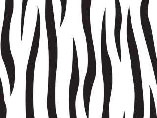 Zebra Party Supplies EXTRA LARGE Treat Bags Favors Cello 5X3X11