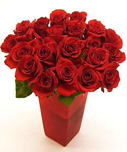 Premium Red Long Stem Roses (Case of 20)