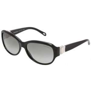 TIFFANY & CO 4018 Sunglasses in color 80013C Everything