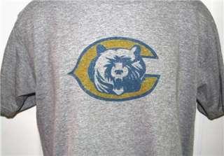 Chicago BEARS 90s Throwback Logo NFL T Shirt X Large