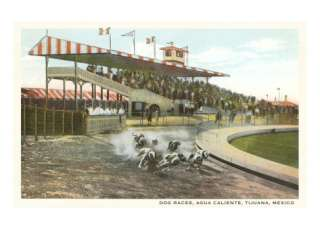 Dog Races, Agua Caliente, Tijuana, Mexico Posters at AllPosters