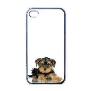 Yorkshire Terrier Yorkie Dog Puppy Puppies #12 Apple iPhone 4 Case
