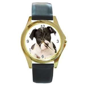 American Staffordshire Puppy Dog Round Gold Trim Watch Z0015