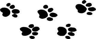Cat Cougar Panther Tracks Print Decals 3.75x9 choose color