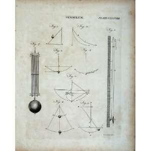 : Encyclopaedia Britannica Pendulum Diagrams Drawings: Home & Kitchen