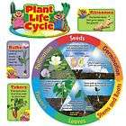 Butterfly Garden Insect Lore Life Cycle Teaching items in Primary