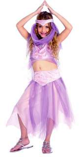 Harem Belly Dancer Girls Costume   Belly Dancer Costumes