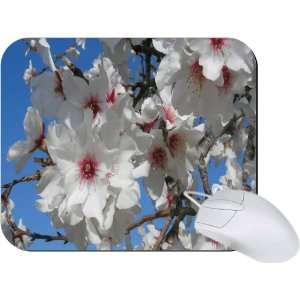 Rikki Knight Cherry Blossom Flower Close up Mouse Pad