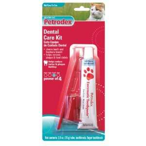 Cat Dental Care Kit, Malt Toothpaste, 2 Toothbrushes: Pet Supplies