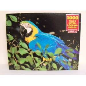 Hoyle 1000 Piece Puzzle   Macaw Everything Else