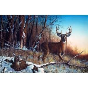 Deer Print Resting Place
