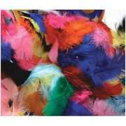 Company Feathers Hot Colors Chenille Kraft Company Feathers Hot Colors